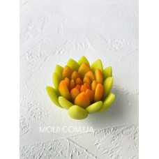 Silicone mold Succulent 2