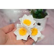 Silicone mold Daffodils