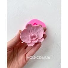 Silicone mold Orchid mini