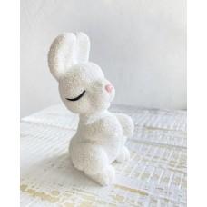 Silicone mold Bunny dad